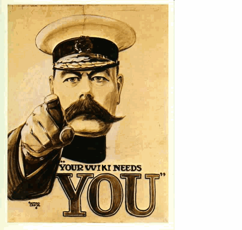 Your Wiki Needs You.png